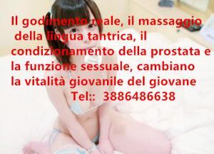381441818
